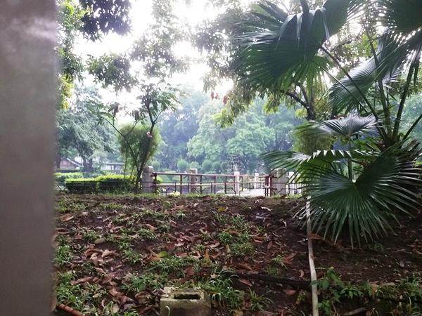 柵の向こうの池