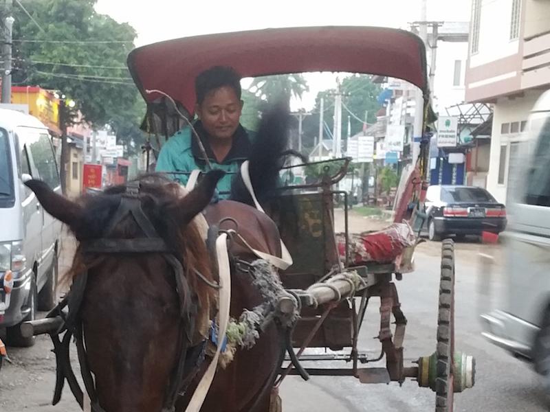馬車と運転手