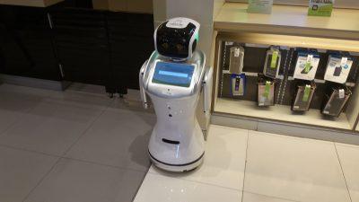Guide Robot