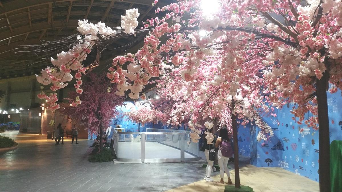 オカダマニラの夜桜