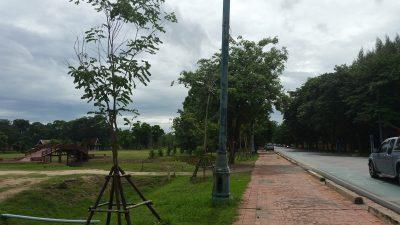 Naresuan Road in Ayutthaya