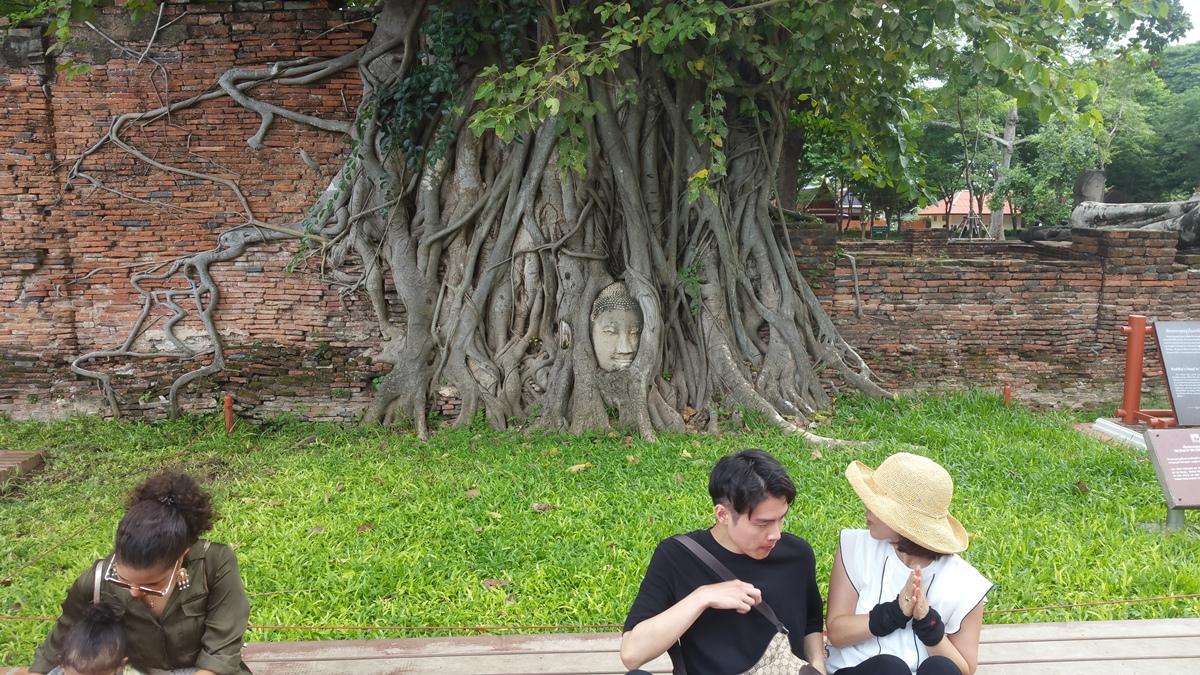 People taking photos in front of the Buddha head at Wat Mahathat.