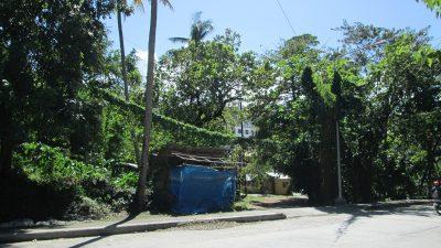 プエルトガレラの道路