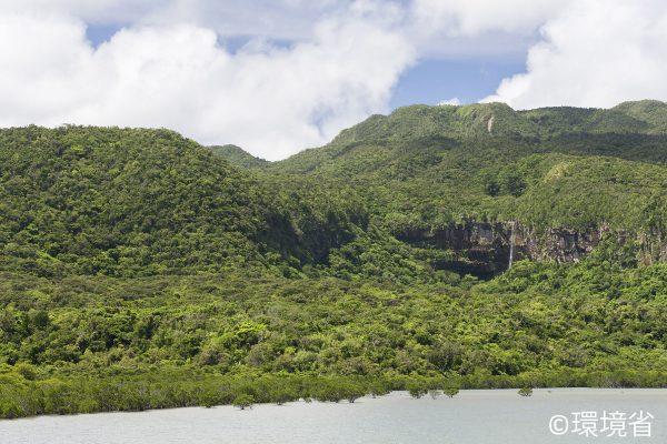 西表島の船浦湾からの眺望